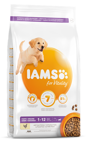 IAMS Puppy Large Breed