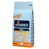 Advance Maxi Adulto 14Kg